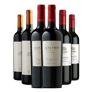 Pack com 6 Unidades de Vinhos
